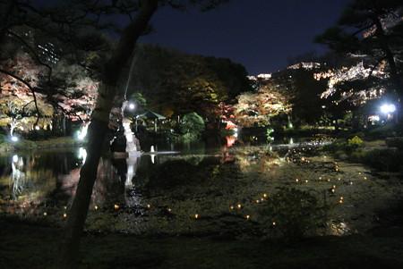 日比谷公園ライトアップ(2013-11-29-3)