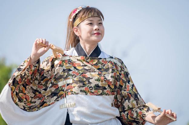 ひめじ良さ恋まつり2016 斐川よさこい連「神名火」