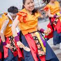 Photos: 横浜よさこい祭り2016 聯