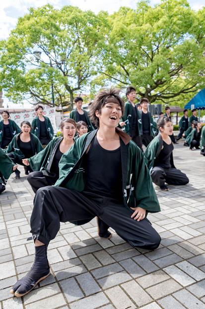 犬山踊芸祭2016 信州大学YOSAKOI祭りサークル和っしょい