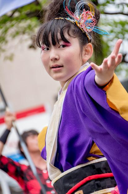 犬山踊芸祭2016 信州駒ケ根縁舞蓮