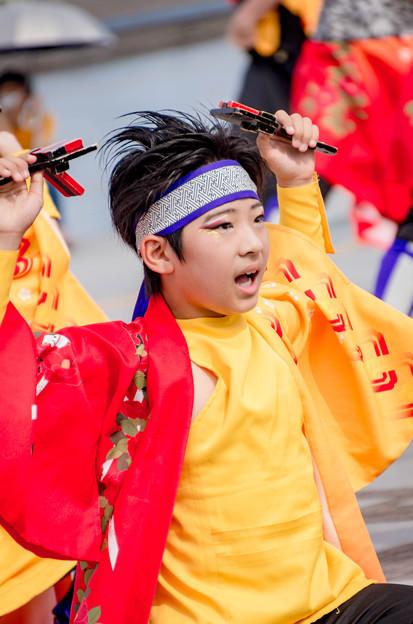 横浜よさこい祭り2016 いとう舞士童