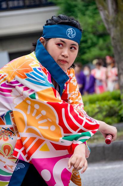 YOSAKOIソーラン日本海 彦根三十五万石大会2016 天舞賤ヶ岳