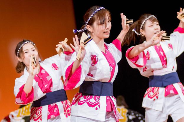 堺よさこい かえる祭り2016 絆百祭