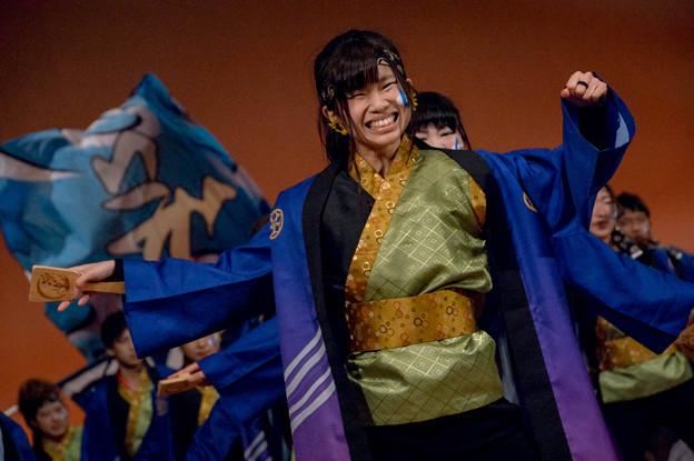 堺よさこい かえる祭り2016 大阪教育大学YOSAKOIソーランサークル凛憧