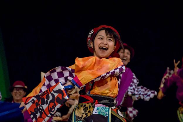 堺よさこい かえる祭り2016 夢源風人