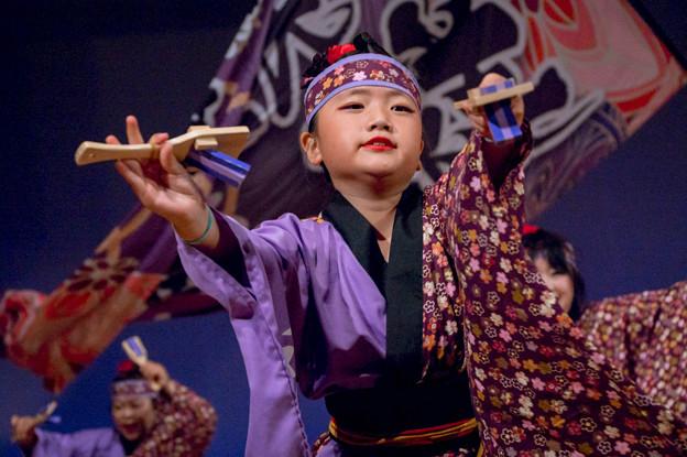 堺よさこい かえる祭り2016 翔舞