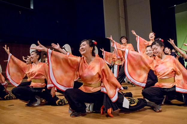 堺よさこい かえる祭り2016 神戸学生よさこいチーム湊
