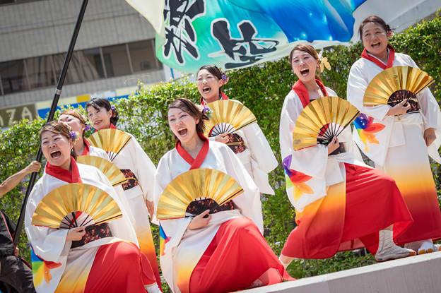 守口ぱわーあっぷよさこい2016 丹波篠山楽空間