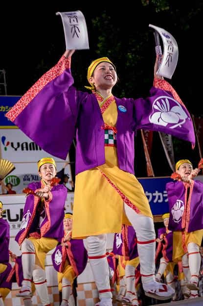 よさこい全国大会2016 鳴子連梵天