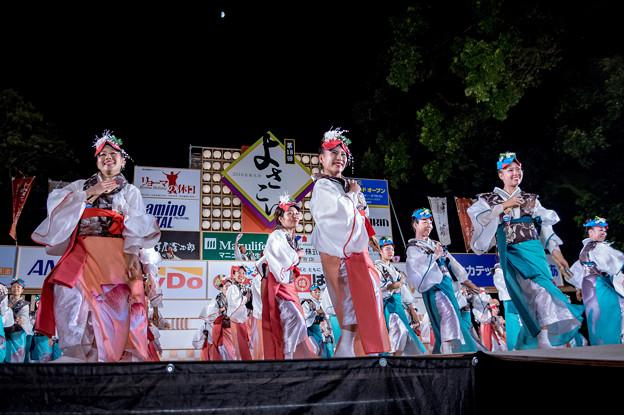 よさこい全国大会2016 夢舞隊