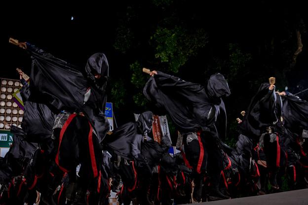 よさこい全国大会2016 京都チーム「櫻嵐洛」