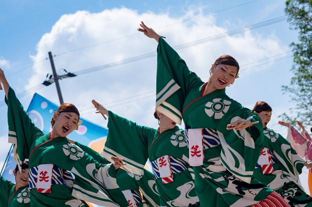 あざいあっぱれ祭り2016 近江笑人