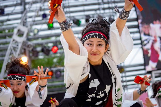 にっぽんど真ん中祭り2016 嘉們-KAMON-