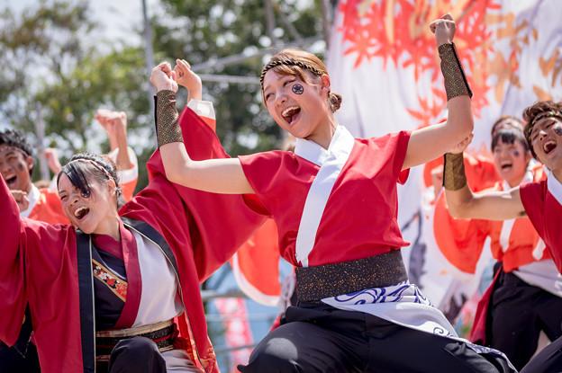 あざいあっぱれ祭り2016 滋賀大学よさこいサークル椛