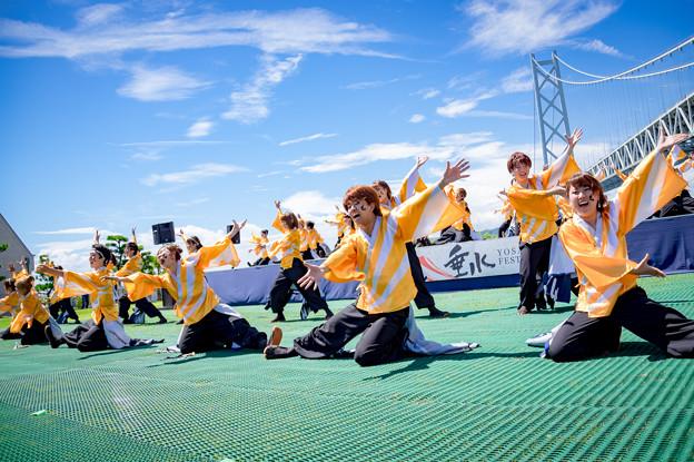 神戸よさこい2016 香川大学よさこい連風華