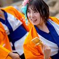 写真: ゑぇじゃないか祭り2016 桃山学院大学 よさこい連「真輝-SANAGI-」