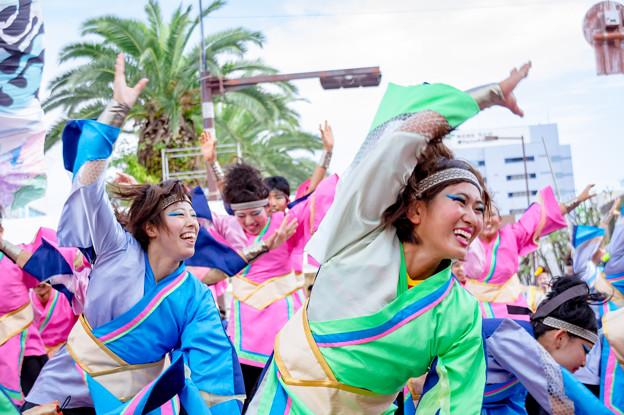 安濃津よさこい2016 愛知淑徳大学 鳴踊