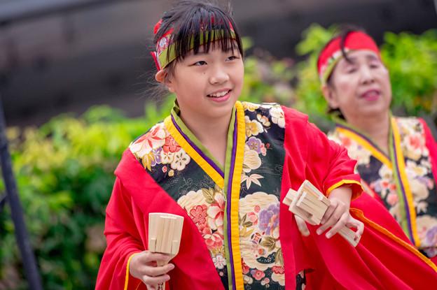 よさこい大阪大会2016 よさこいおおきに