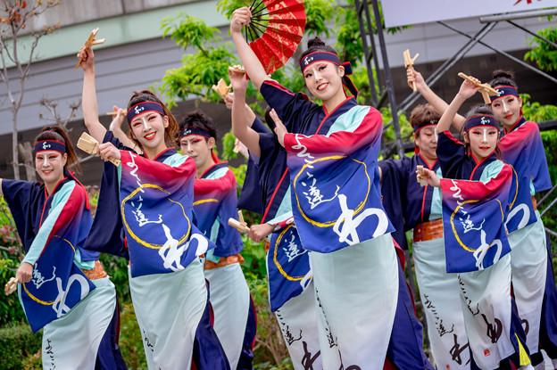 よさこい大阪大会2016 よさこい連「わ」