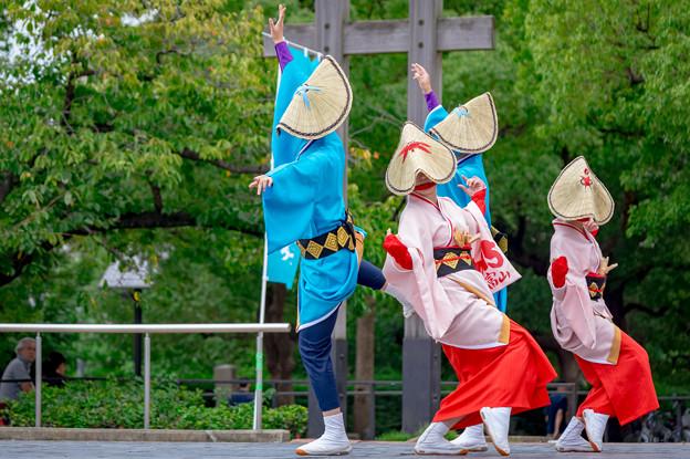 神戸アライブ2016 3015
