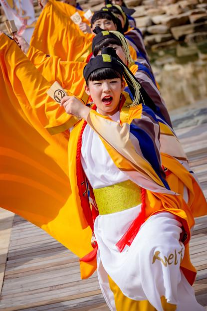 ゑぇじゃないか祭り2016 12Twel舞