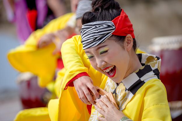 ゑぇじゃないか祭り2016 憂喜世桜