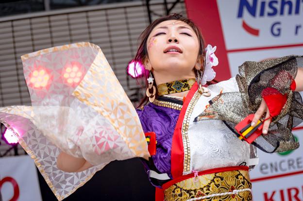 ふくこいアジア祭り2016 桜