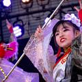 写真: ふくこいアジア祭り2016 桜