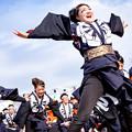 写真: 岐聖祭2016 岐阜聖徳学園大学 柳