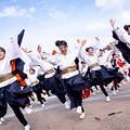 岐聖祭2016 岐阜聖徳学園大学 柳
