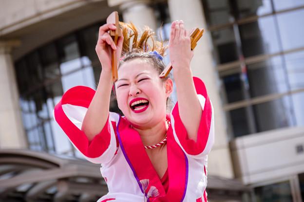 藤井寺元気祭り2017 輝粋