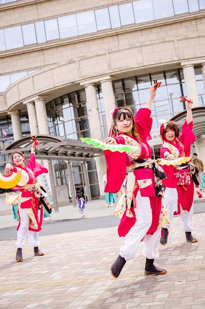 藤井寺元気祭り2017 仮称DancingMushrooms