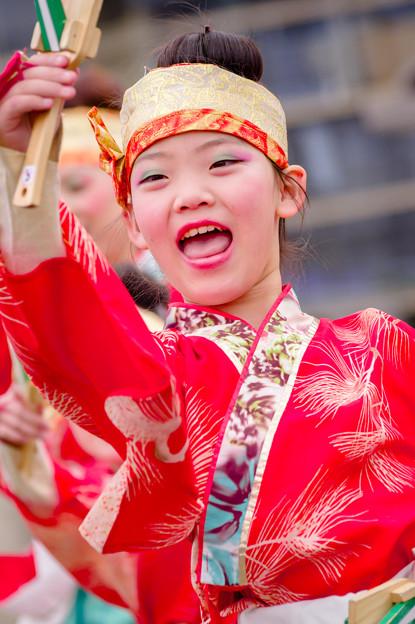 藤井寺元気祭り2017 大和いろは