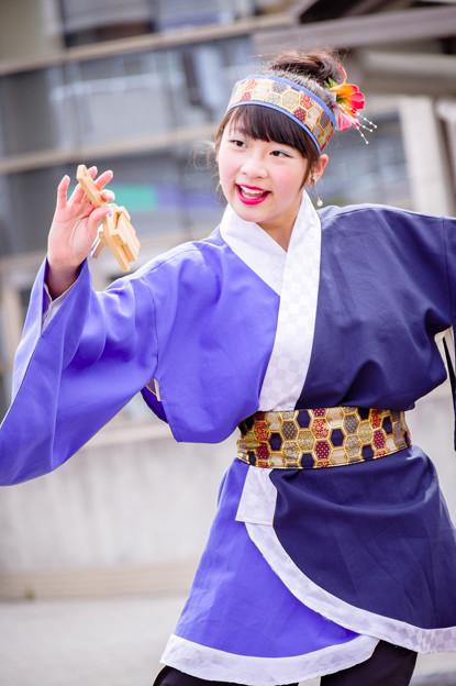 藤井寺元気祭り2017 彩鳴