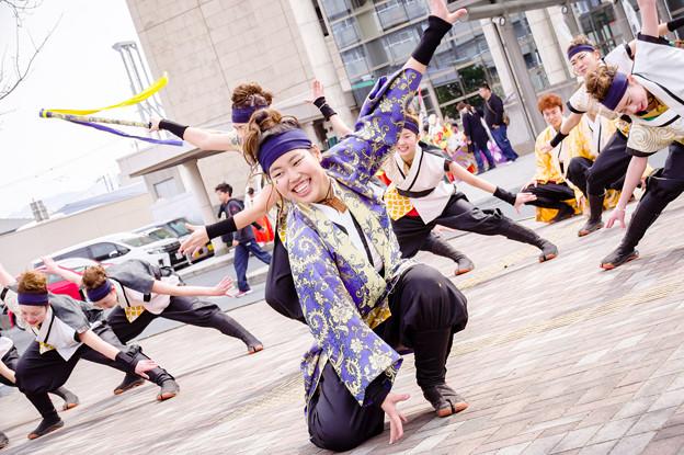藤井寺元気祭り2017 四天王寺大学 YOSAKOIソーラン部 仏喜踊