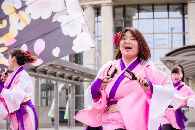 藤井寺元気祭り2017 心蕾万笑