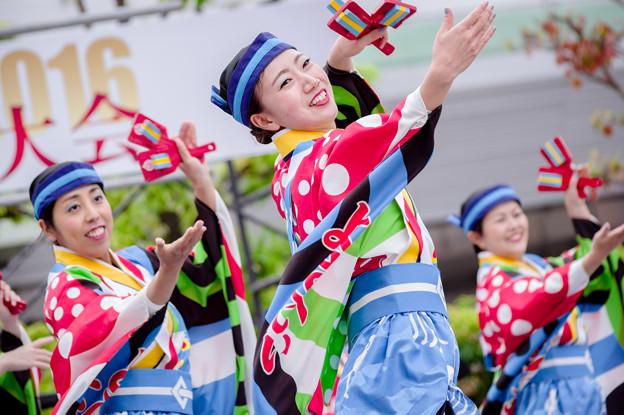 よさこい大阪大会2016 とらっくよさこい(ちふれ)
