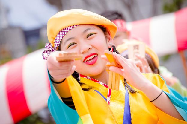 大東ふれあいフェスタ2017 貝塚よさこい舞人