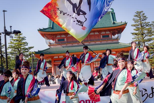 京都さくらよさこい2017 よさこい連「わ」