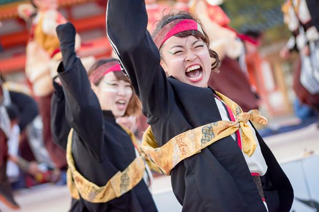京都さくらよさこい2017 京炎そでふれ!輪舞曲