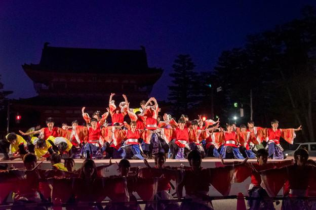 京都さくらよさこい2017 京炎そでふれ!彩京前線