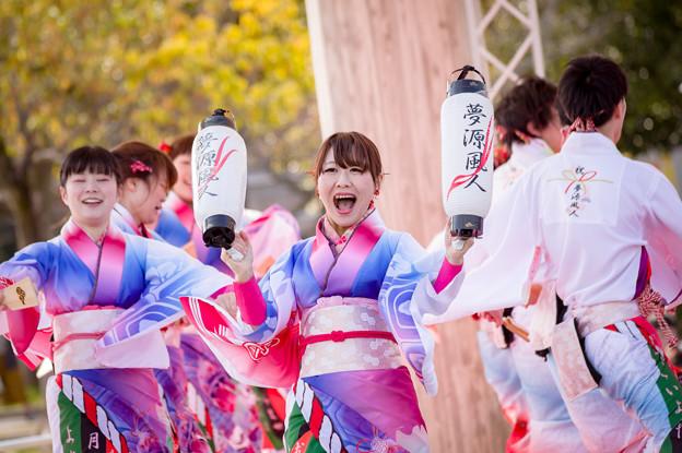 京都さくらよさこい2017 夢源風人