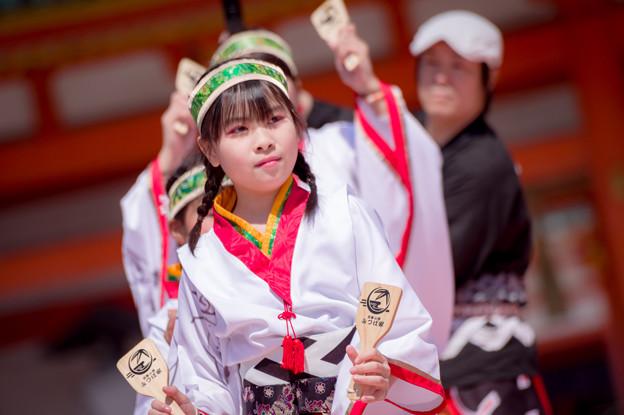 京都さくらよさこい2017 京都山城みつば家