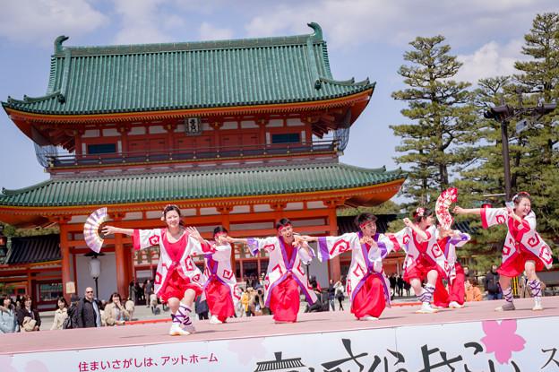 京都さくらよさこい2017 輝粋
