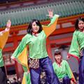写真: 京都さくらよさこい2017 よさこい美山「山舞麗」