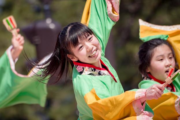京都さくらよさこい2017 よさこい美山「山舞麗」