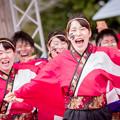 写真: 京都さくらよさこい2017 神戸大学よさこいチーム山美鼓