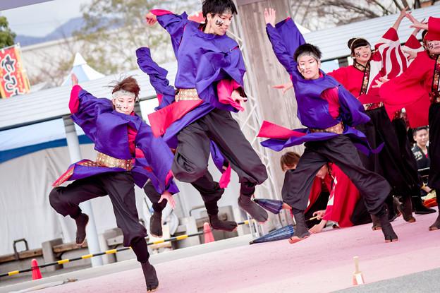 京都さくらよさこい2017 神戸大学よさこいチーム山美鼓