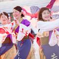 写真: 京都さくらよさこい2017 音錦